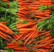 beta carotene foods