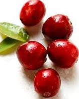 cranberry and leaf example