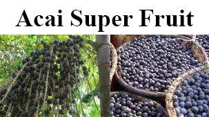 Acai Super Fruit