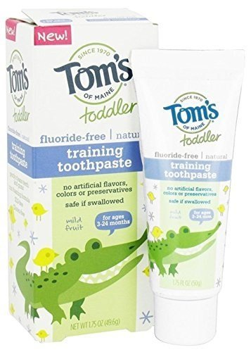 TOM'S OF MAINE: Fluoride Free Toddler Training Toothpaste Mild Fruit Gel 1.75 oz