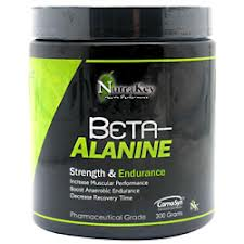 BETA ALANINE UNFLAVORED