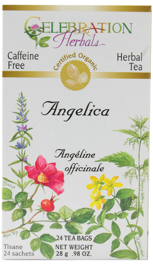 Angelica Root Organic 24 bag from Celebration Herbals