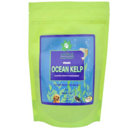 ANIMAL ESSENTIALS INC: Organic Ocean Kelp Supplement for Dogs & Cats 8 oz
