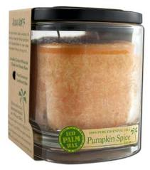 ALOHA BAY: Candle Aloha Jar Pumpkin Spice Orange 8 oz
