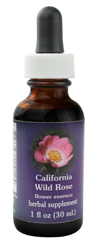 Flower essence: CALIFORNIA WILD ROSE DROPPER 1 OZ
