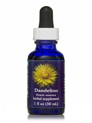 Flower essence: DANDELION DROPPER 1OZ
