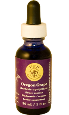 Flower essence: OREGON GRAPE DROPPER 1OZ