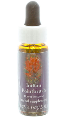 Flower essence: INDIAN PAINTBRUSH DROPPER 0.25OZ