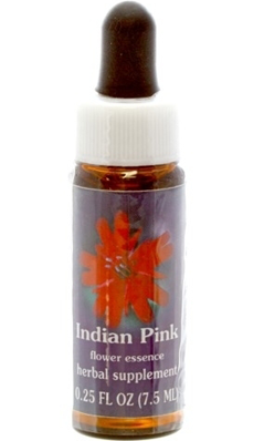 Flower essence: INDIAN PINK DROPPER 0.25OZ