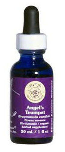 Flower essence: ANGELS TRUMPET DROPPER 0.25 OZ