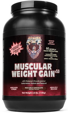HEALTHY N FIT NUTRITIONALS: Muscular Weight Gain 3 Chocolate Powder 2.5 lb