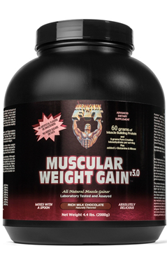 Muscular Weight Gain 3 Chocolate Powder 4.4 lb from HEALTHY N FIT NUTRITIONALS