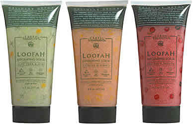 EARTH THERAPEUTICS: Loofah Exfoliating Scrub Aloe Vera & Kiwi 6 fl oz