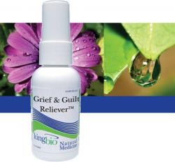 KING BIO: GRIEF GUILT RELIEVER 2OZ