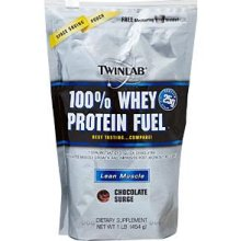 100 Percent Whey Protein Powder Chocolate Zipper Pouch 1 LB from TWINLAB