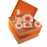 NOLI N NALI LLC: Baby Shower Gift Set 5 pc