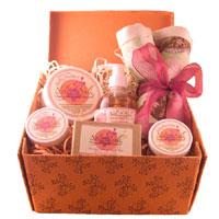 NOLI N NALI LLC: Deluxe Baby Shower Gift Set 6 pc