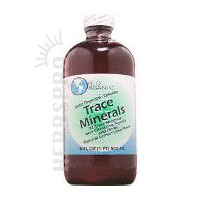 WORLD ORGANICS: Trace Minerals 16 oz