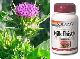 from plant to bottle, milk thistle works